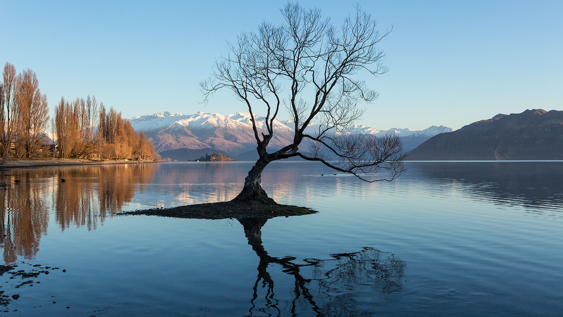 Small Group Tours - The best small group tour from Queenstown