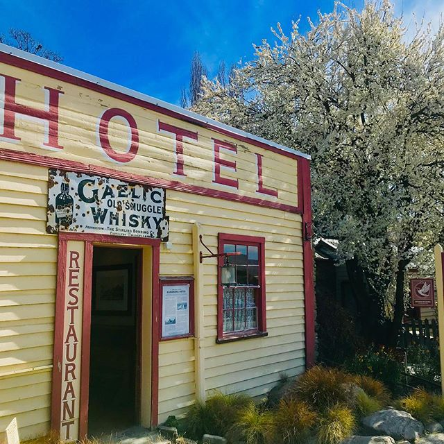 Spring at the Cardrona Hotel, blossoms and beer at one of New Zealand's most iconic hotels.