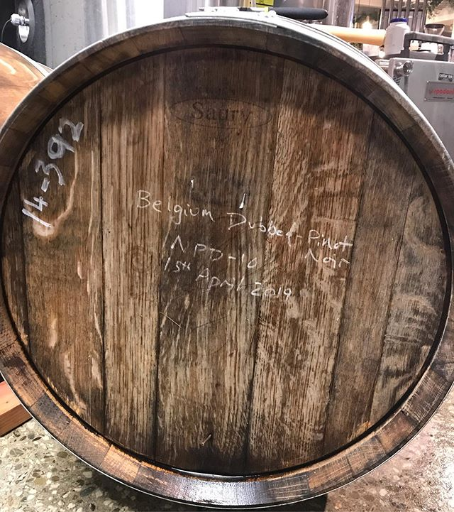 Wine and beer fusion? kind of.  Belgian ale beer fermented in Pinot Noir barrels. These local breweries have some really cool beers available. Come and check them out with Hop On Beer Tours