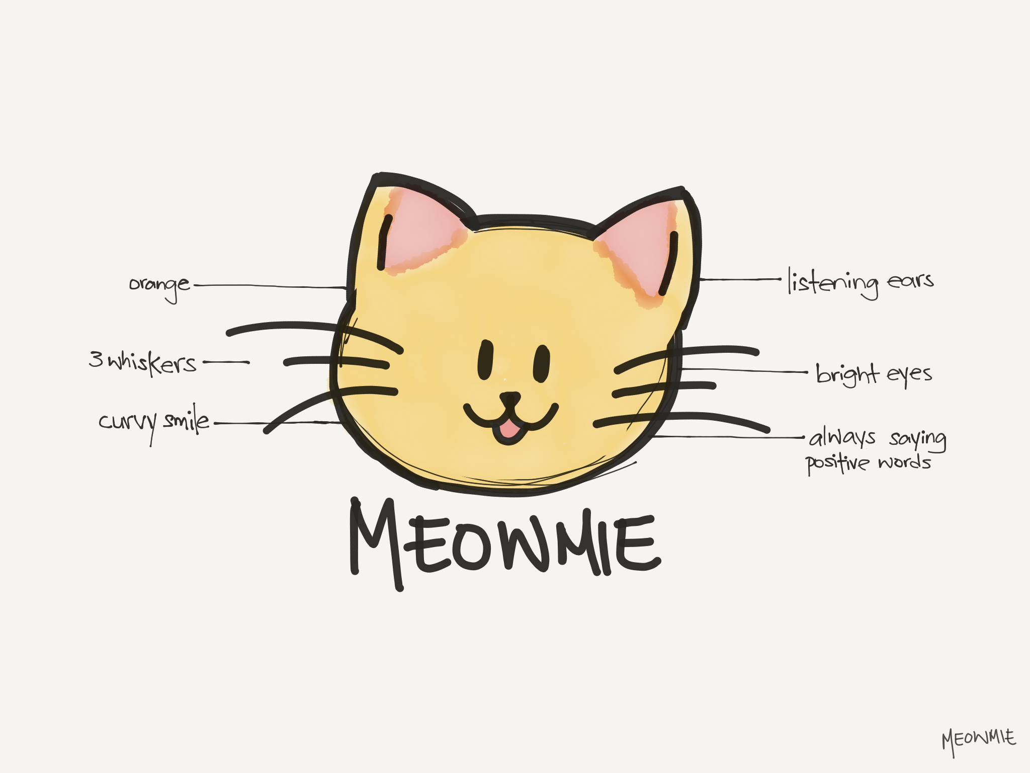 The Anatomy of Meowmie