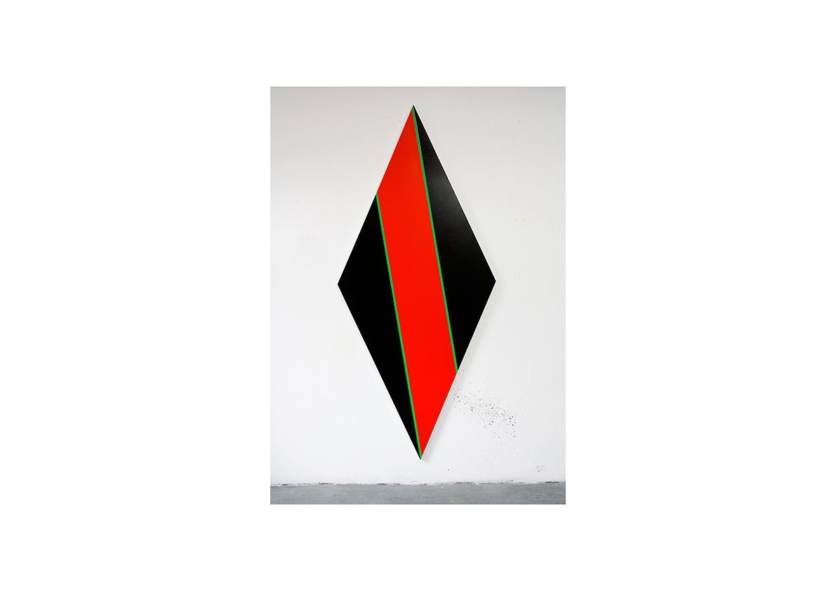 Combate, 2012    Acrylfarbe auf Baumwollstoff 250 x 110 cm