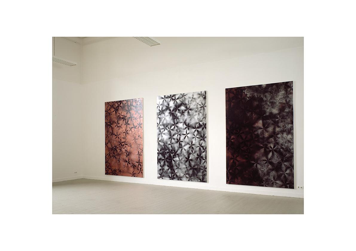 Kunst Akademie Düsseldorf 2005    Ohne Titel, 2004 Lackspray auf Baumwollstoff je 295 x 195 cm