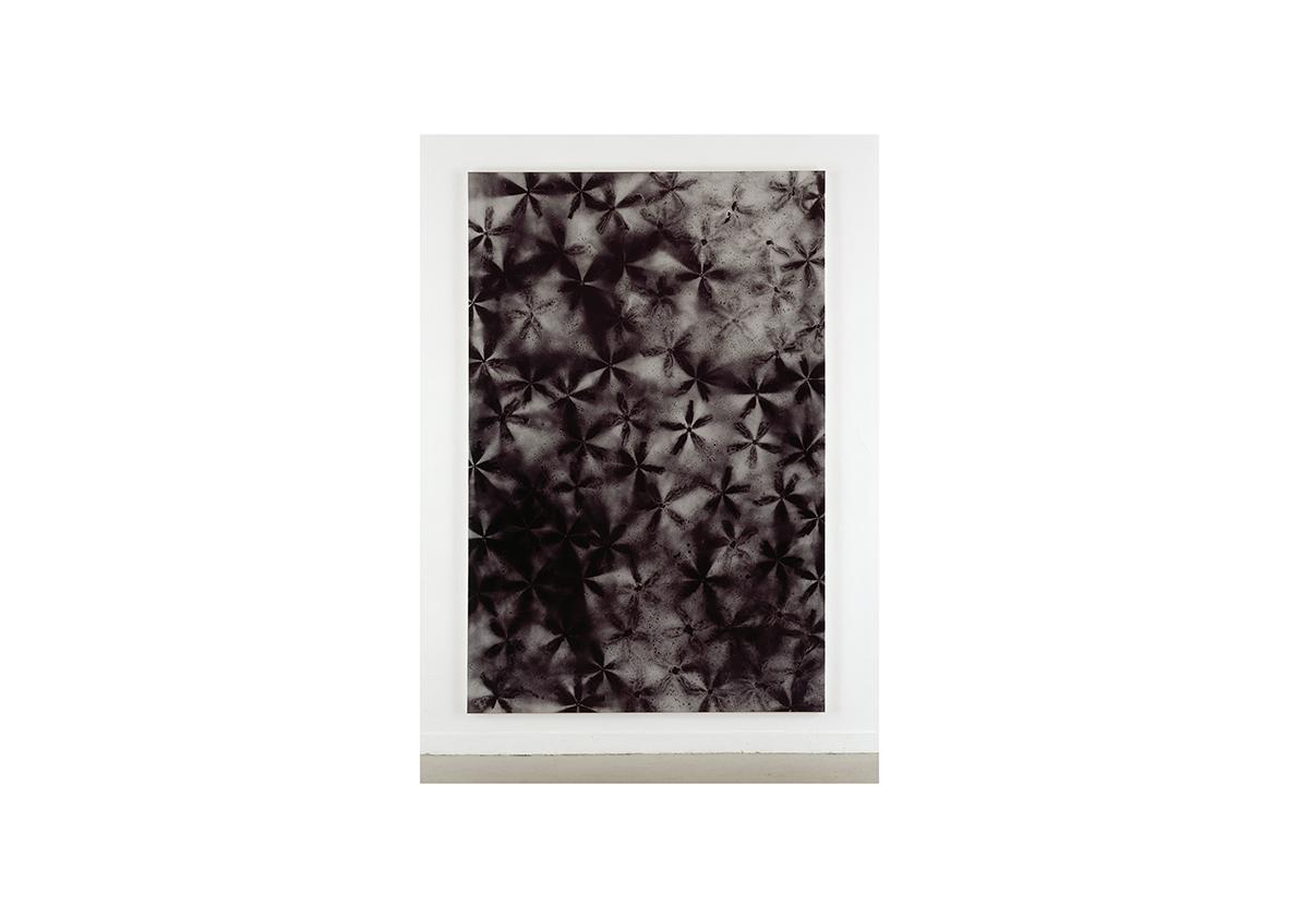 Ohne Titel, 2004    Lackspray auf Baumwollstoff 295 x 195 cm