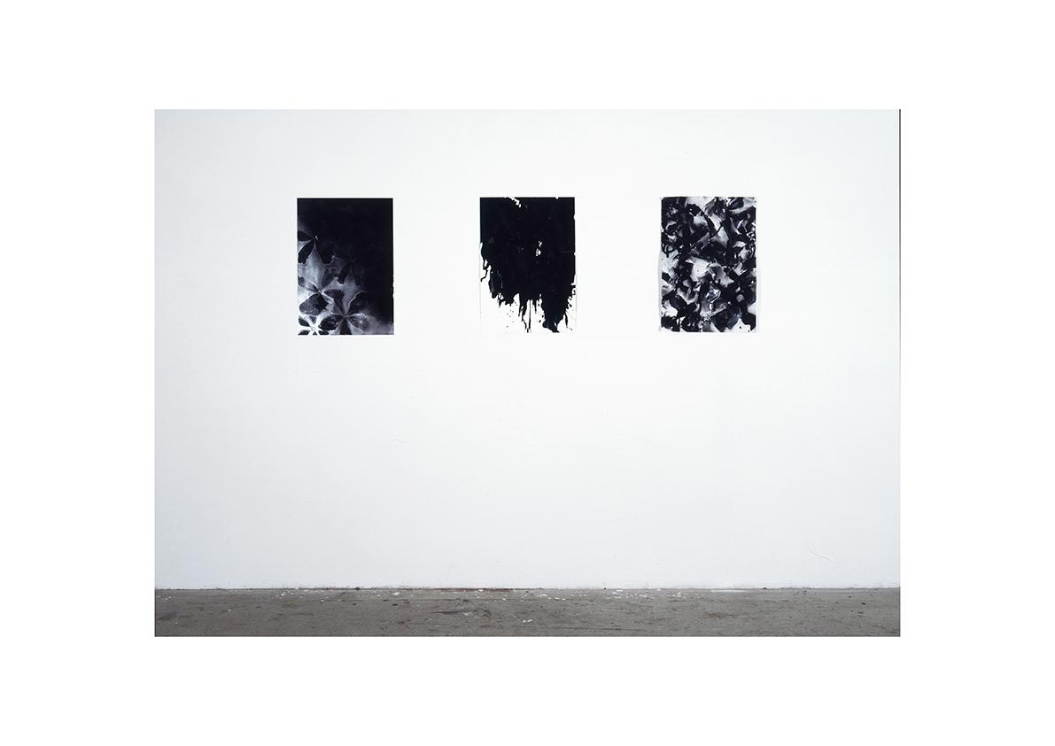 ohne Titel, 2005/ 2006    Lackspray auf Papier je 63 x 44 cm