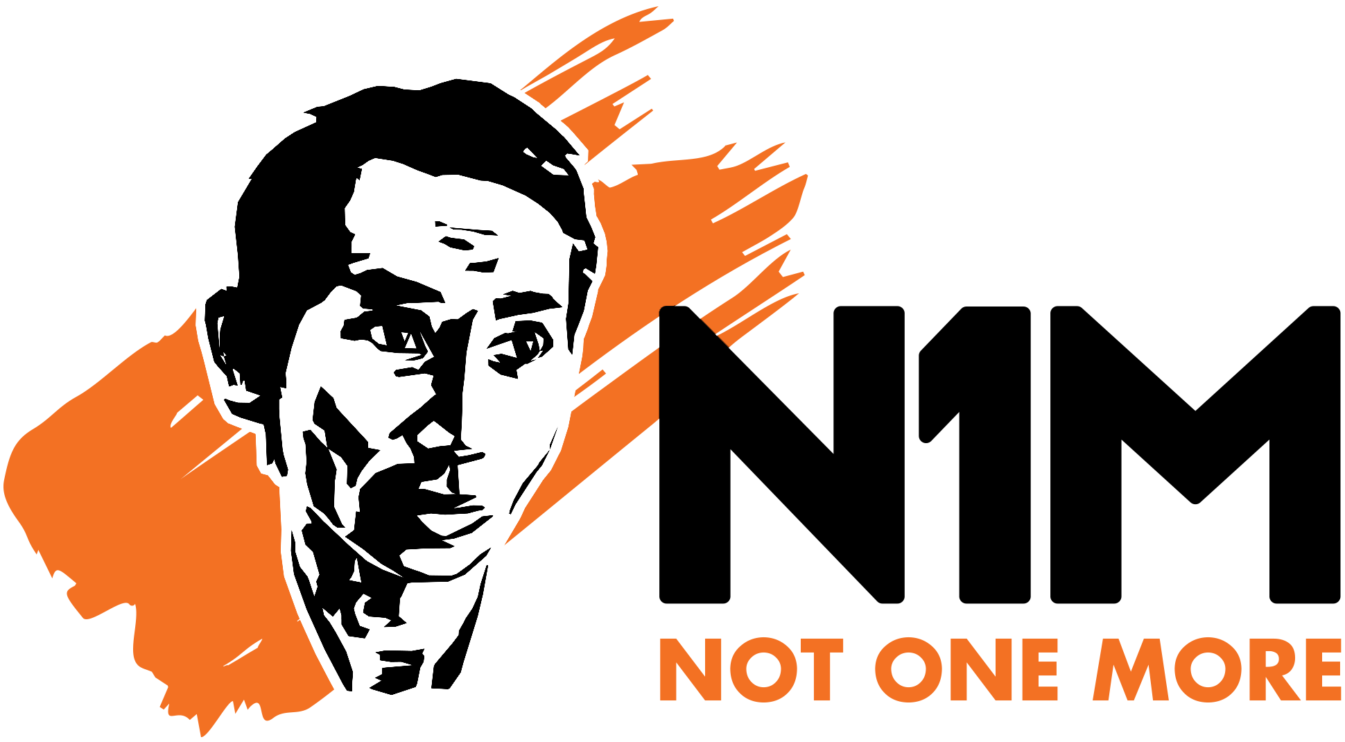 n1m_logo_transparentbg_1940x1070.png