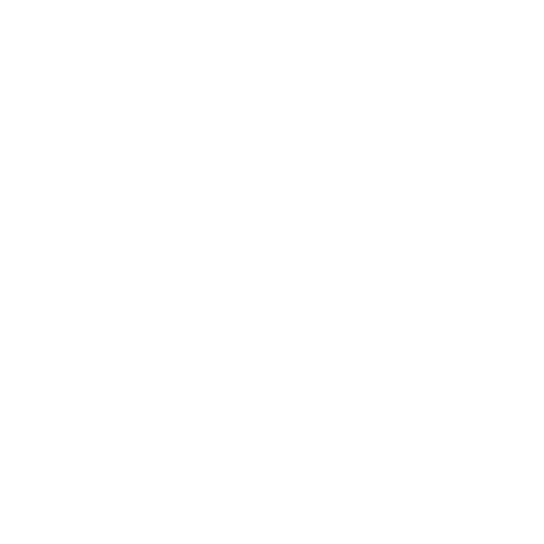 LOGO - PAS ICI _ NOT HERE (2).png