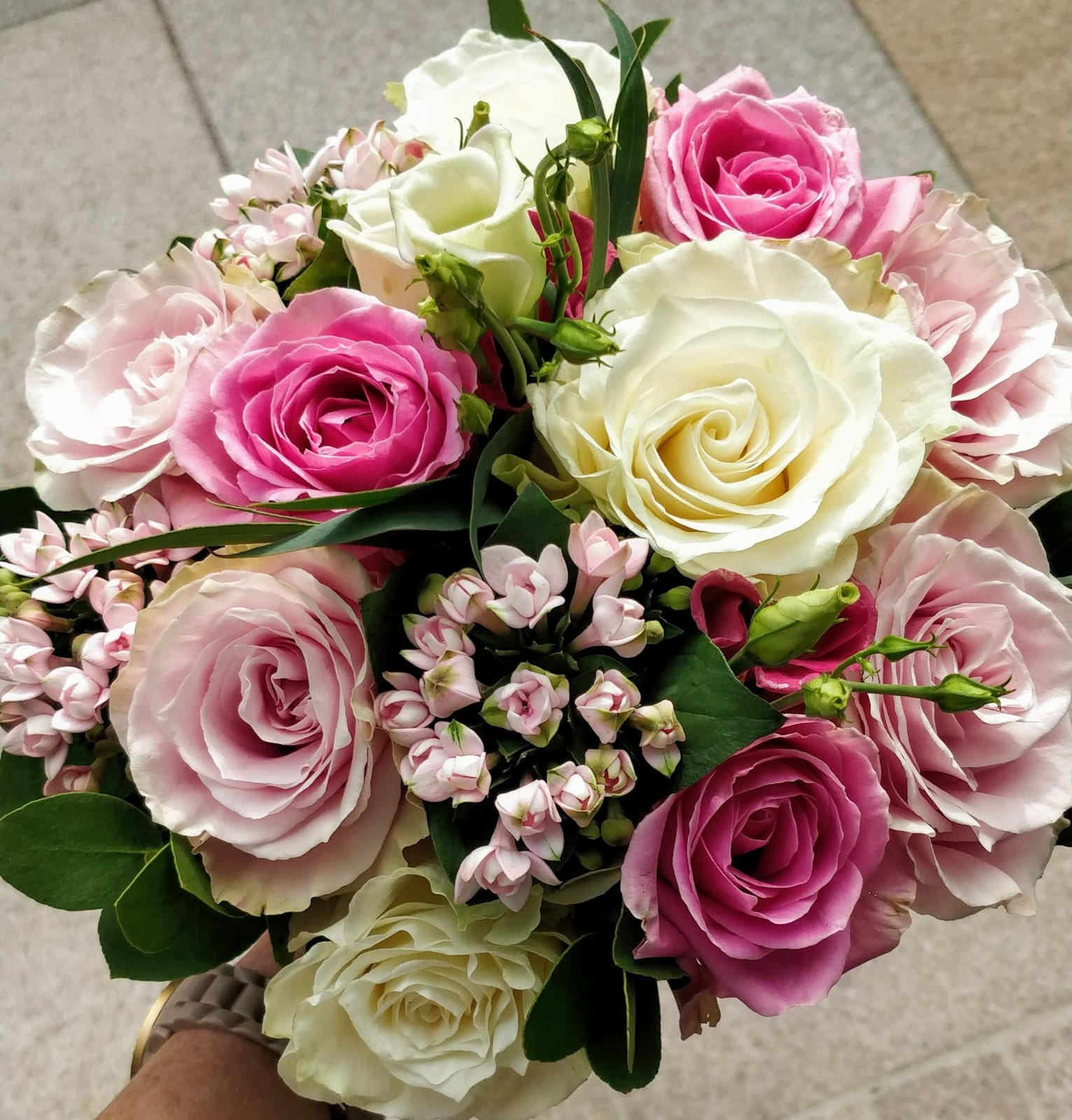 pink_and_white _roses.jpg