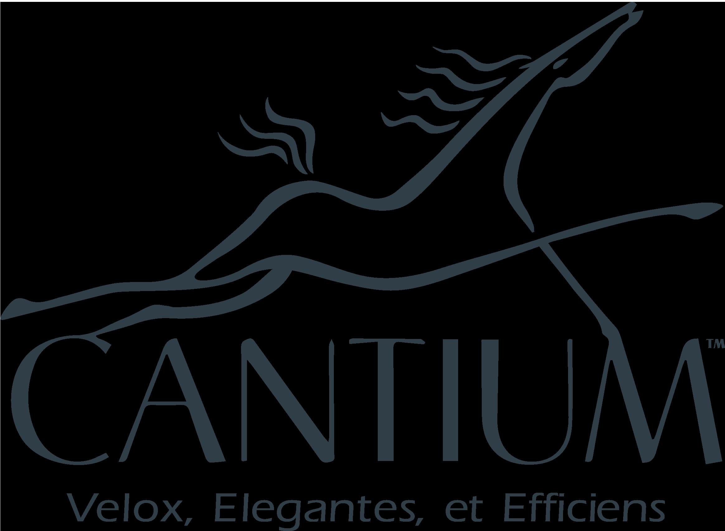 Cantium_Logo_Text_Tagline.png
