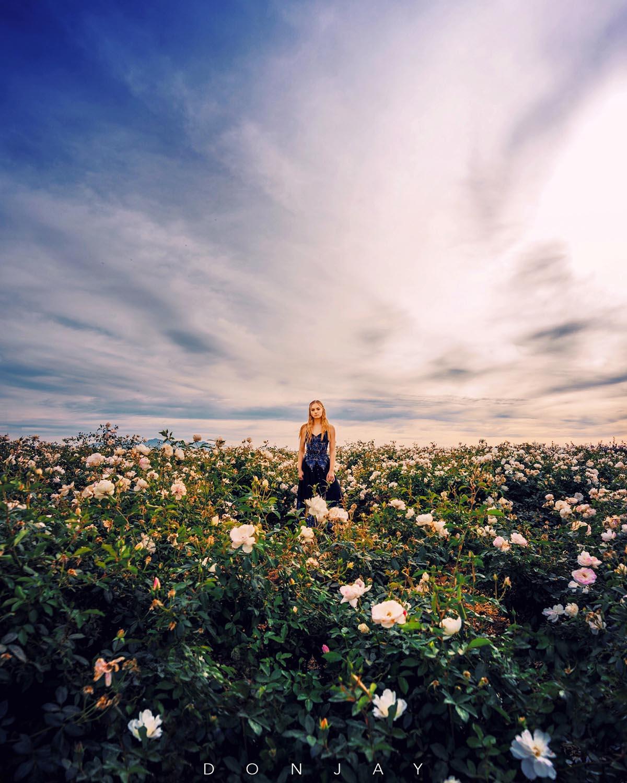 Lilyana White Flowers.jpg