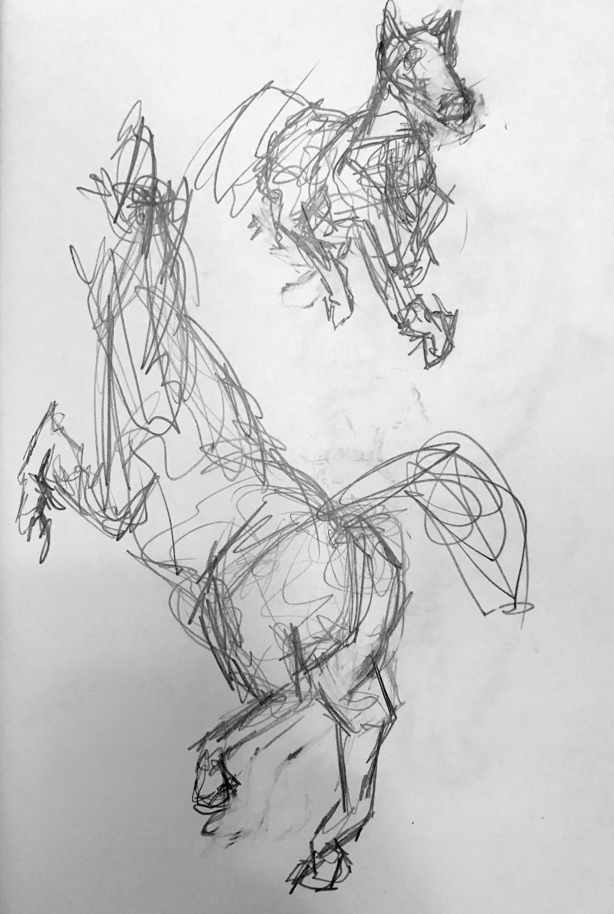 horse_gesture.jpg