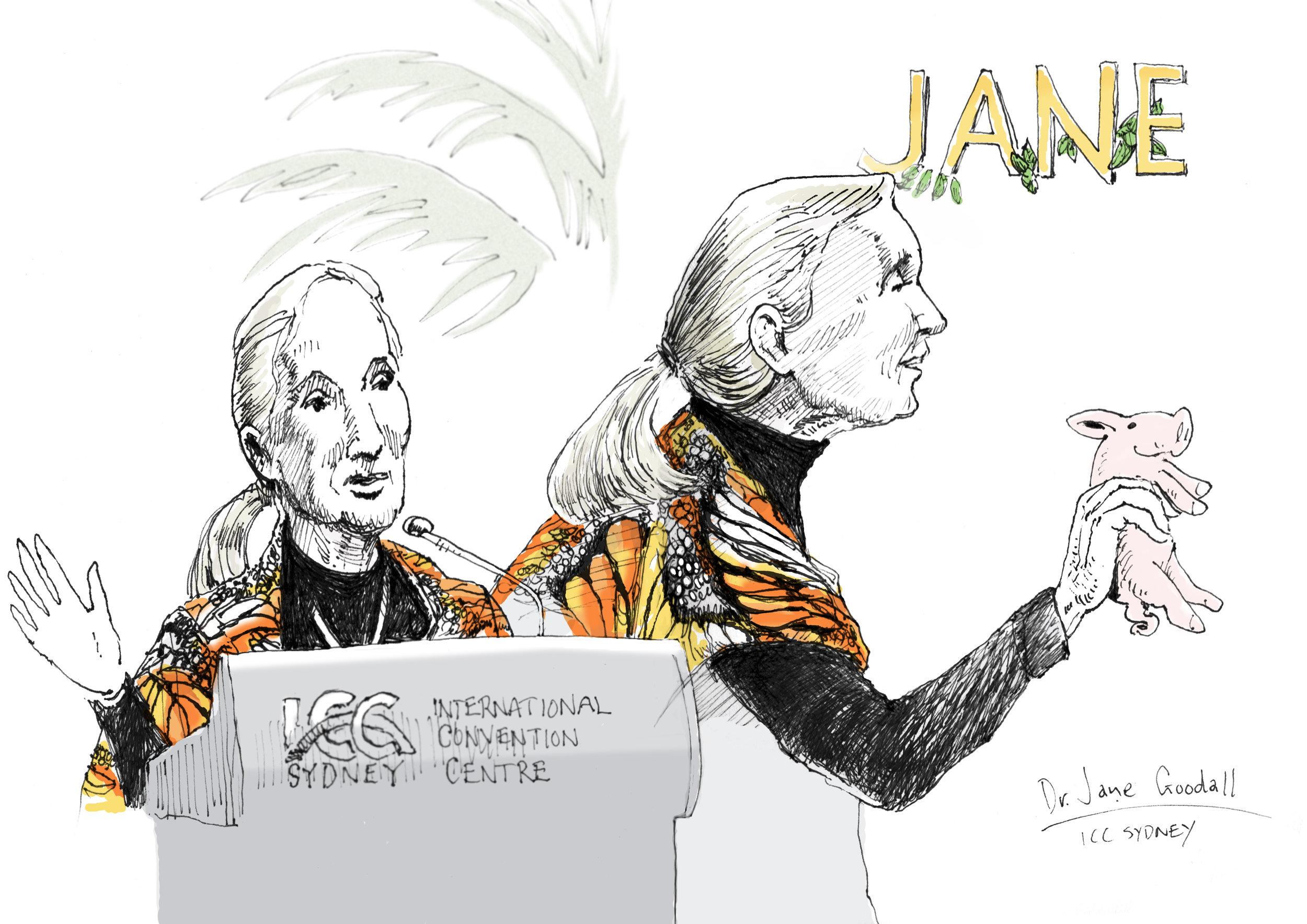 Jane Goodall 1.jpg