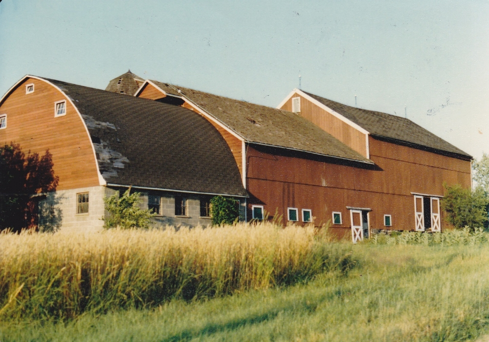 The barns at Unionville Farm circa 1980. Now the winery at Unionville Vineyards.