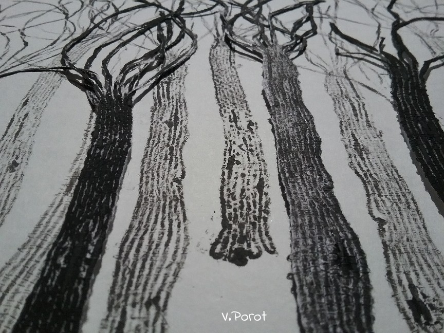 Foret fil de Papier V. Porot