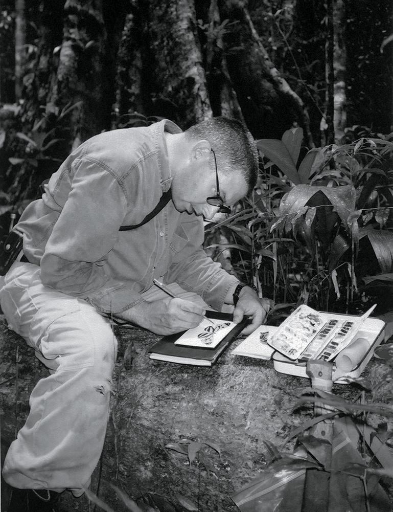 Mark Dion in the rainforest, Guyana. Photograph by Bob Braine