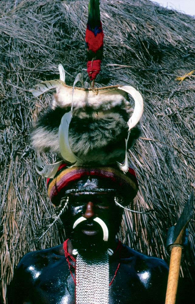Irian Jaya (Indonesian New Guinea) tribsman in full regalia.