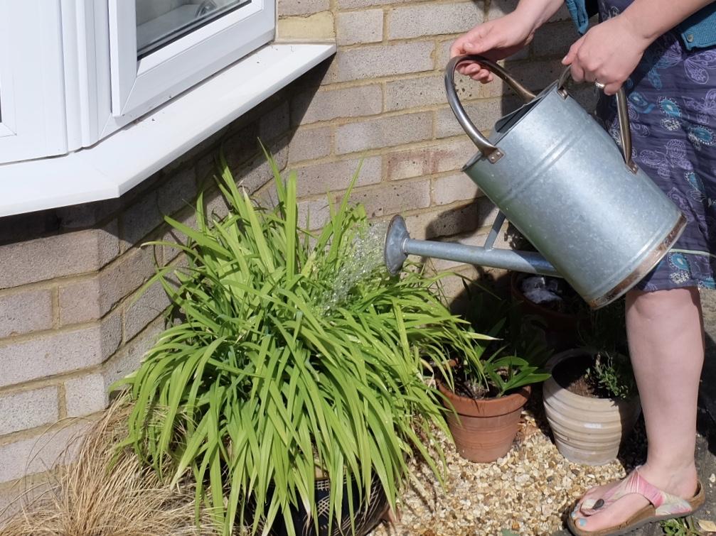 Watering can ergonomics