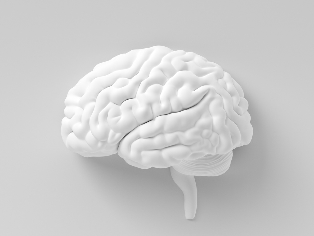 Take your brain to the gym - Meditation is one of the most accessible tools you can use to improve the quality of your life. At its simplest, sitting down to meditate is a workout for your brain. Just as physical exercise keeps you in good physical health, a regular meditation and mindfulness practice will optimise your mental and emotional health.When you begin a regular meditation practice you might notice that you perform better at work, have more energy and focus, feel calmer, little things don't bother you so much, relationships improve, and you feel happier, more often.