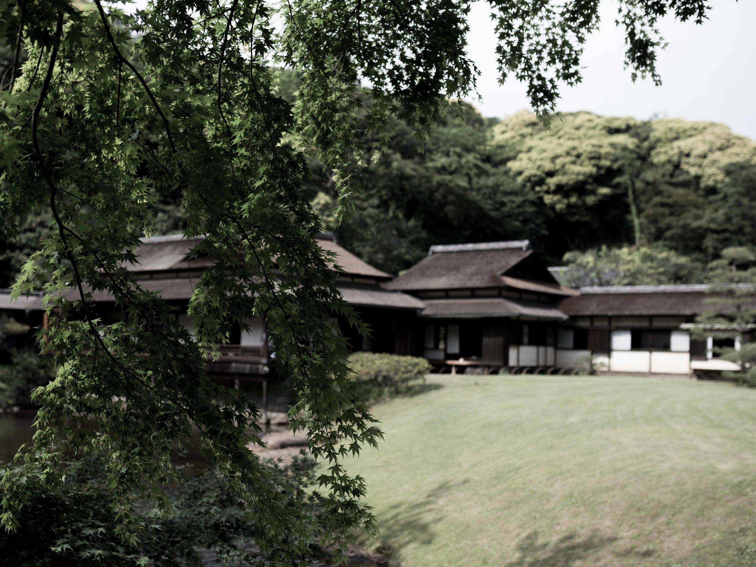 blogpost-japan-5.jpg