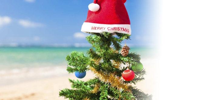 xmas-holidays-blog-post-659x329.jpg
