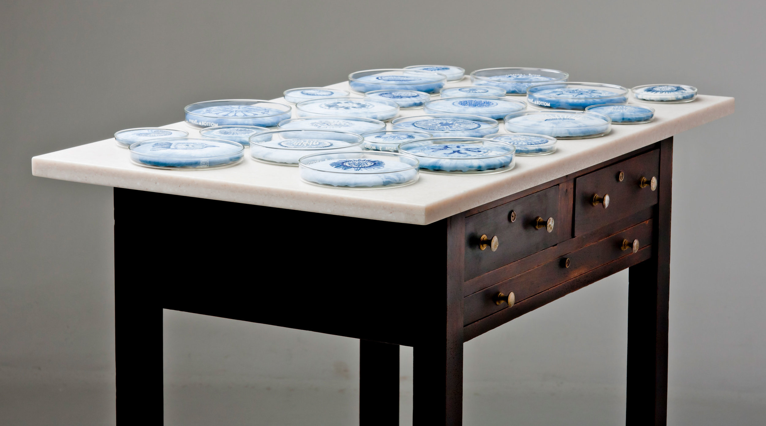 Labouratoire , indigo tie-dye and cotton embroidery on cotton and linen, glass Petri dishes, table, 2007  Photo: Jeff Crawford
