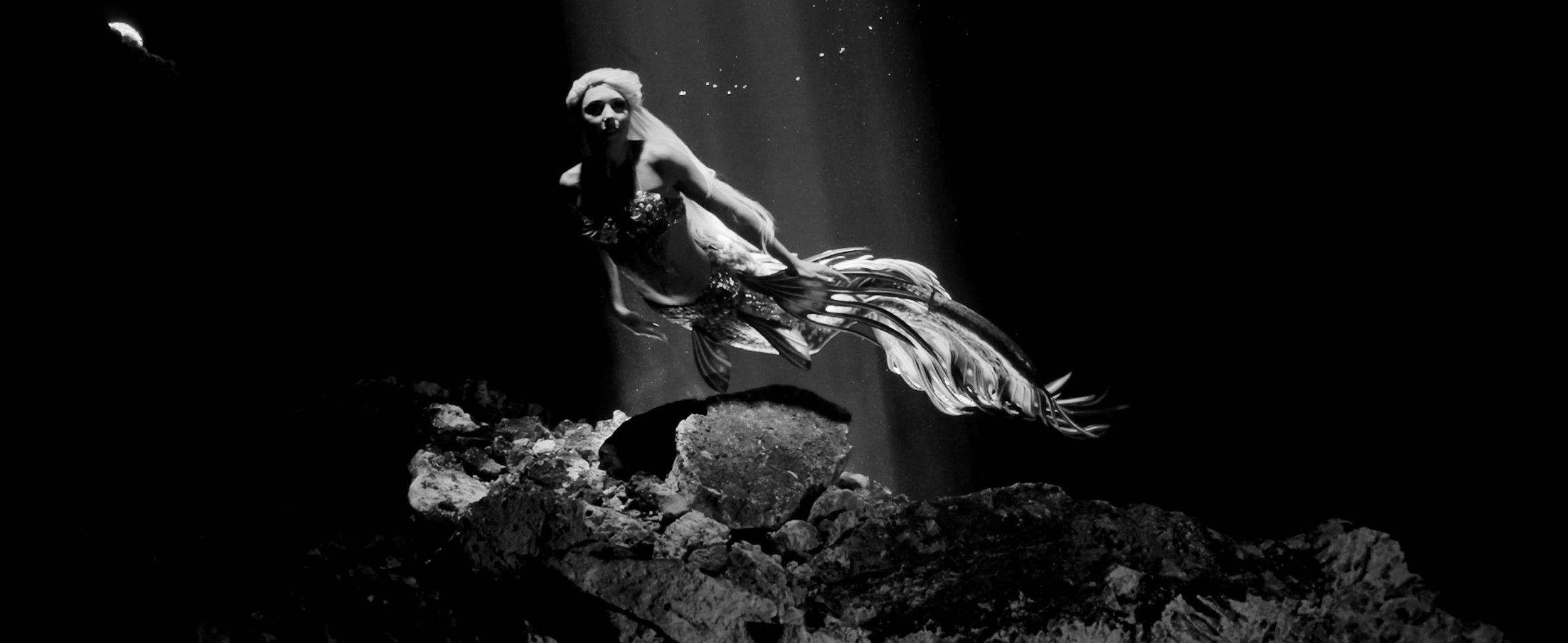 Olympus Underwater production - Niklas Nischke 03.jpg
