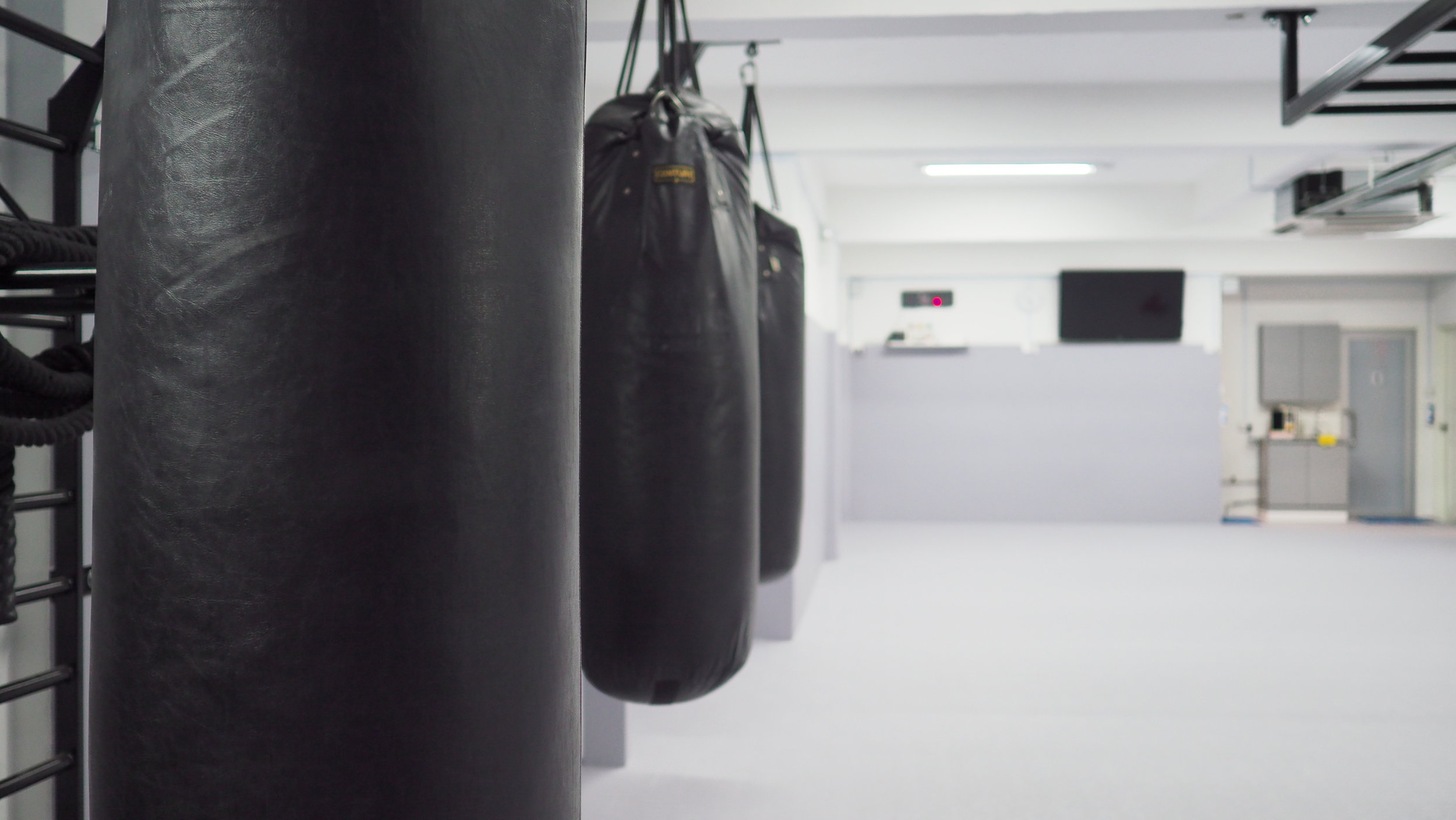 Our Gym - Spanning 2,000 square feet, our gym is fully matted and padded with Dollamur® sport surfaces to keep you safe, allowing you to train with confidence.