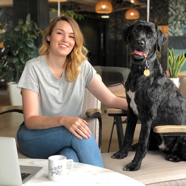 A little #fridayintroductions for anyone new around here (with the help of Gruff the studio doggo)! - This little biz is basically me, Ellie, with the help of some of my creative friends at my @wework in East London when things get crazy! @onpoint.studio is all about beautiful brands and gorgeous content for social media and websites, as well as poster design and more. Basically, I help small businesses put their unique personalities out there in a way both they and their market love. ✨ - I started freelancing to friends and their friends while I was long haul cabin crew 👠 in my down time to keep my creative skills sharp ✏ but word-of-mouth kept me busier than I really had time for around flying and gave me a taste of what I really wanted to do, so I made the leap to full-time and hung up my wings for good! Now there's nowhere I'd rather be than at my laptop, surrounded by sketches and coffee, ☕ bringing business owners' dreams to life. 🖤 - Fun fact: I live in a narrow boat with my dog and husband, cruising London's canals. 🛶 We also just picked up a campervan for adventures further afield 🚛 so we live full time off-grid in two ways!
