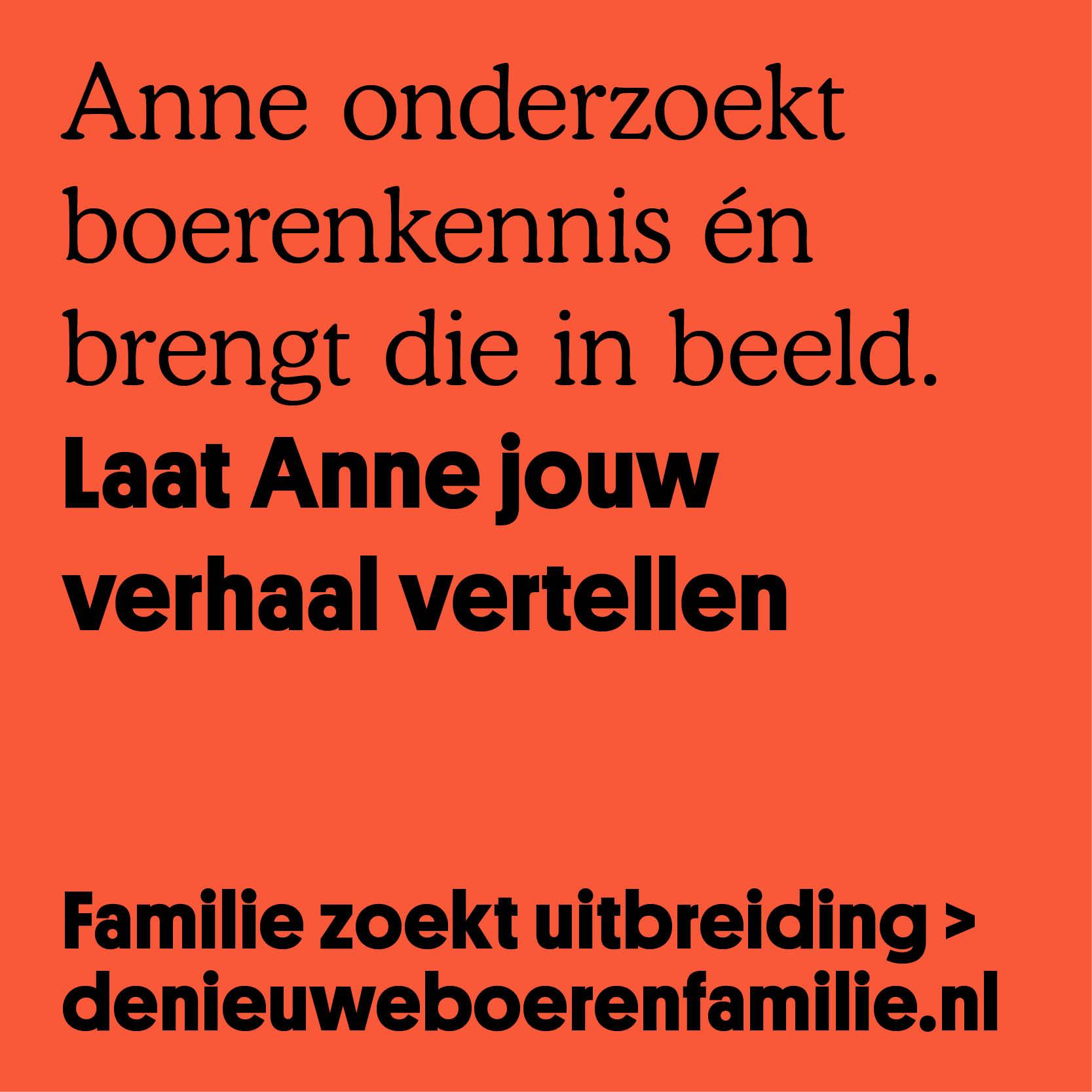 Anne2.jpg