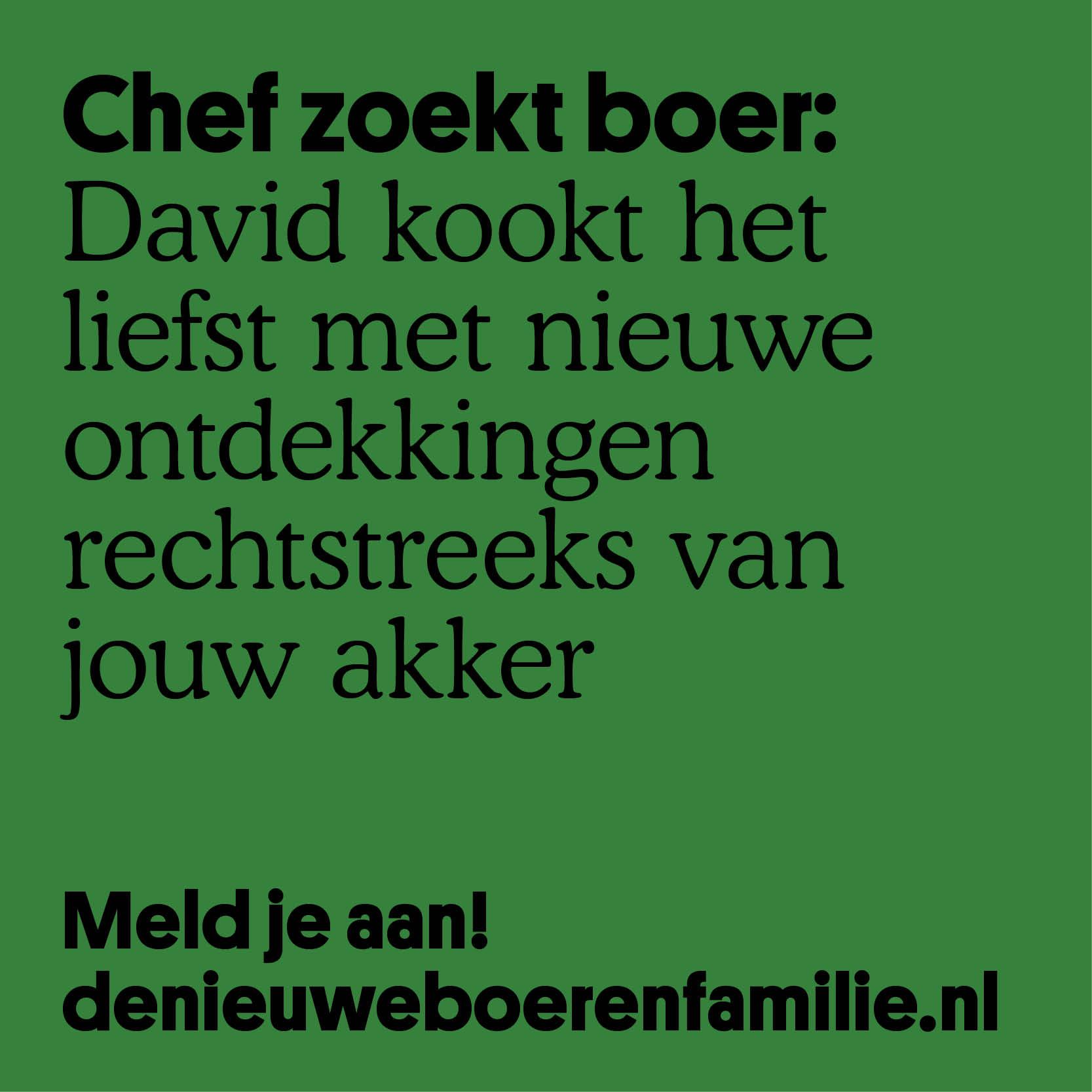 David2.jpg