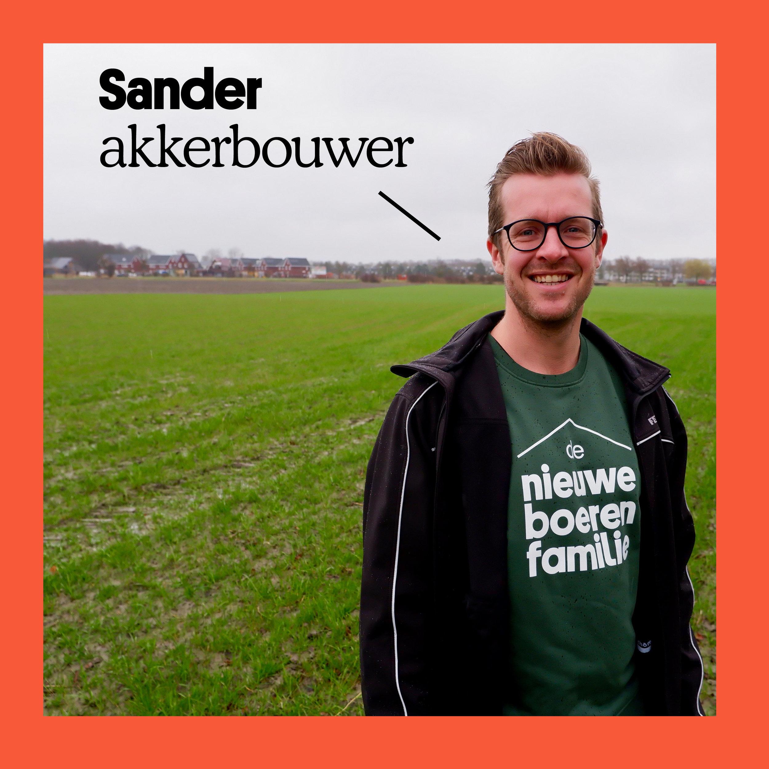 Sander.jpg