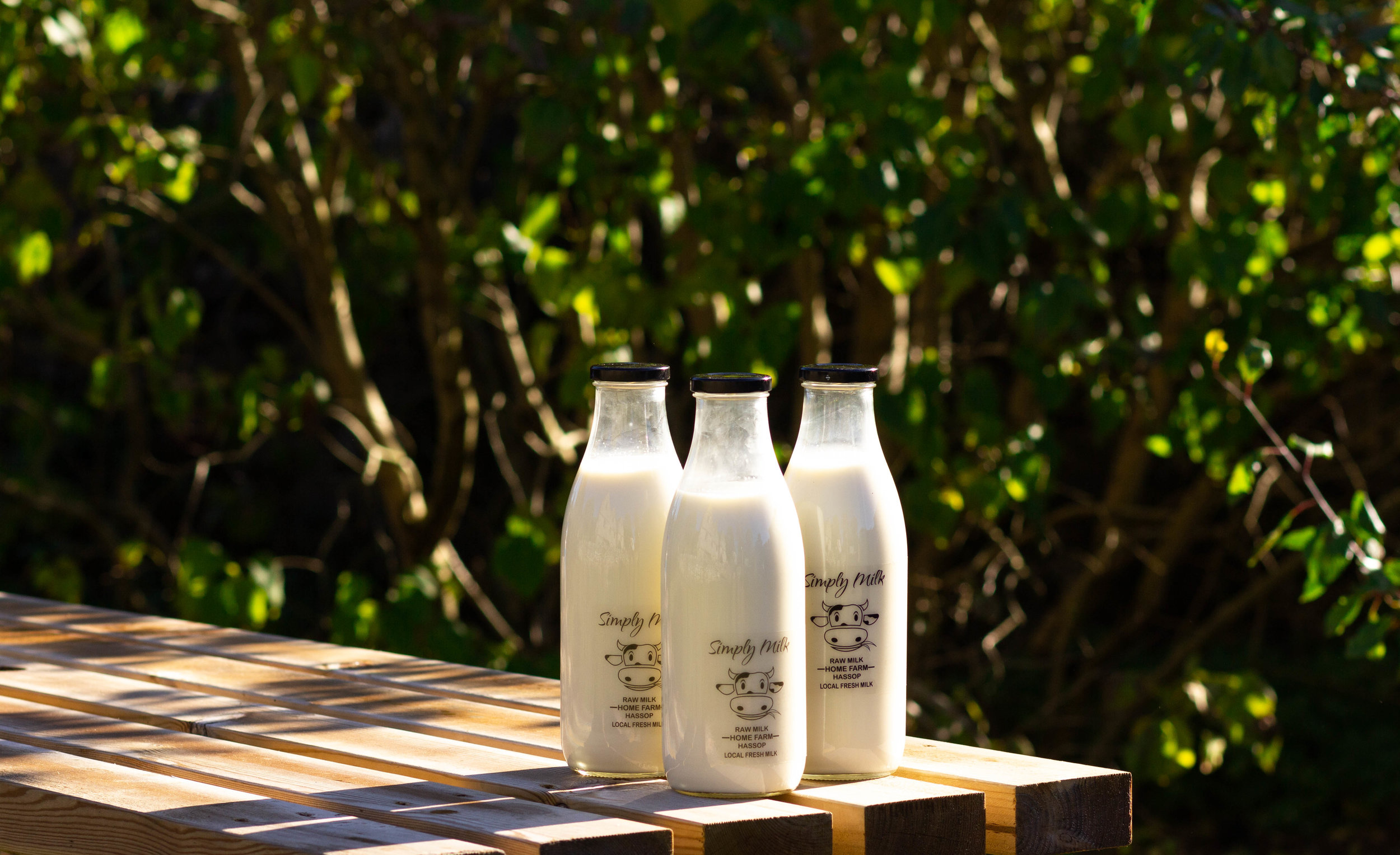 MILK TABLE 1.JPG
