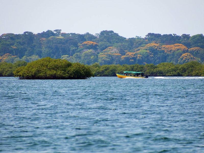 boat tour.jpg