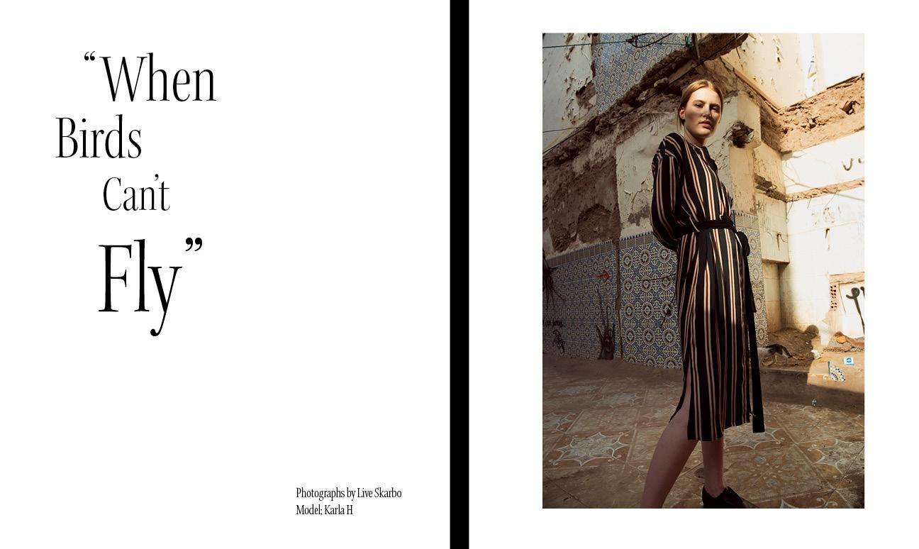 magasin format2.jpg