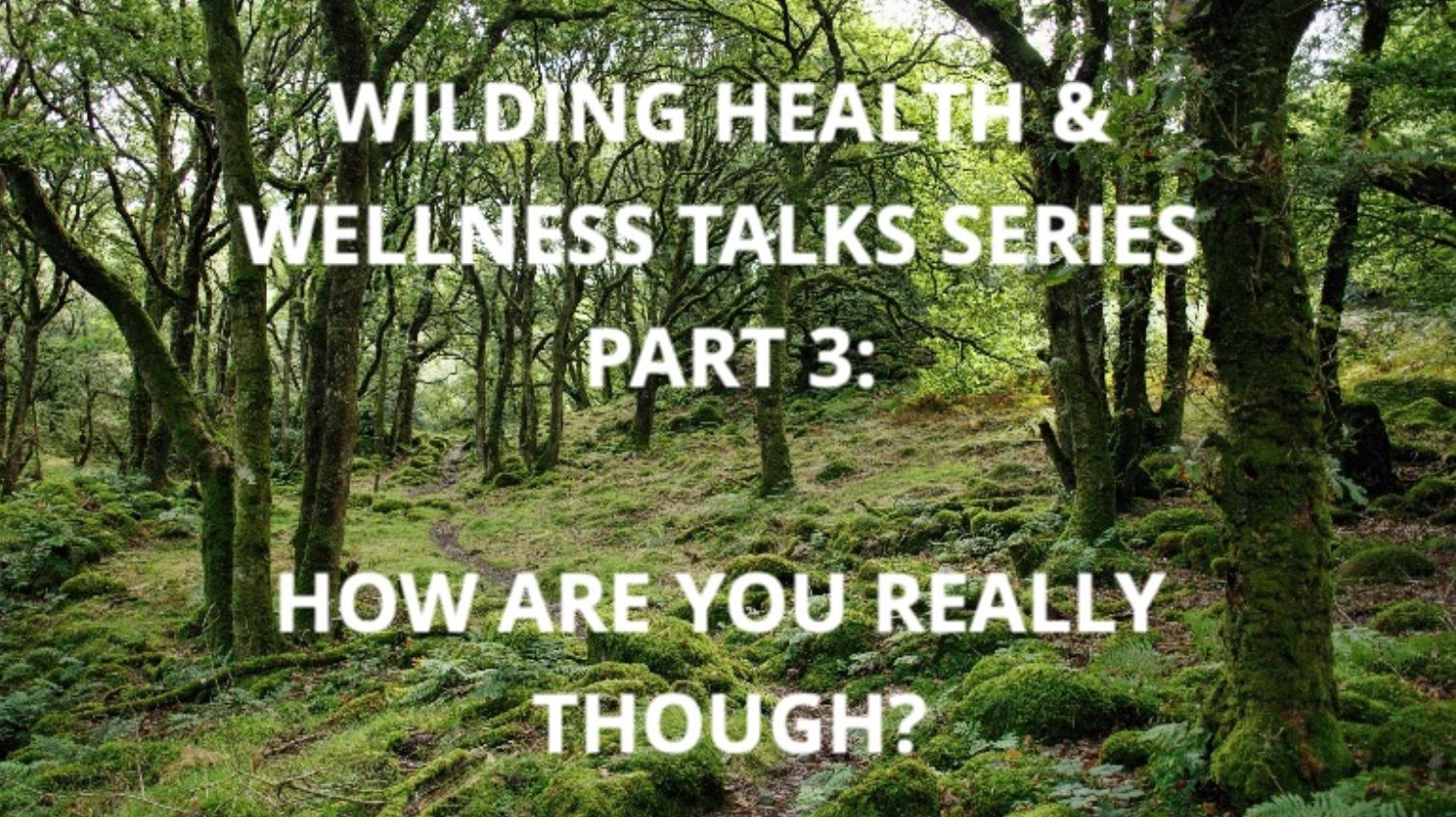 Next Talk 13th March