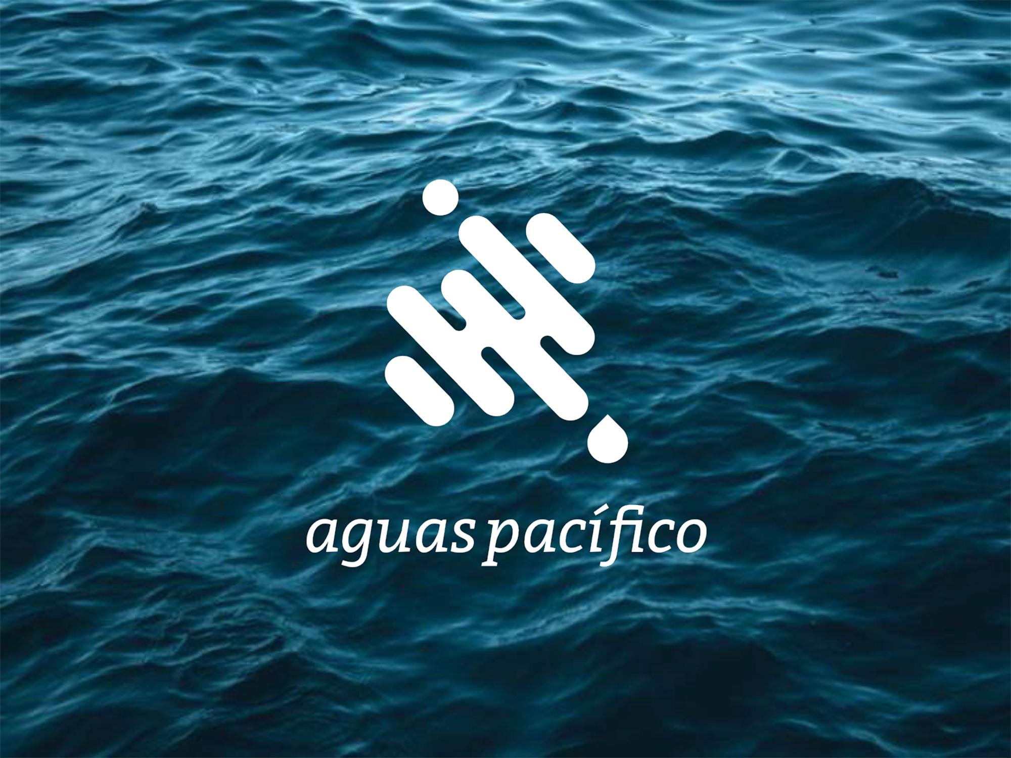AP_Proyecto_Aconcagua-1.jpg
