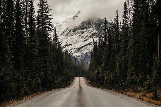 Missing this place. The winding roads and majestic mountain tops around every corner. And at the end of this road is one of the most beautiful lakes I've ever seen. I've been researching how to live in Canada and work as a photographer and apparently its not very easy, since they want to protect Canadian photographers, as they should. 😢 . . . . .  #outdoors #wilderness #getoutside #instanaturelover #natgeohub #summit #instanature #camping #optoutside #rei1440project #getoutstayout #theoutbound #thegreatoutdoors #outdoorlife #choosemountains #goatworthy #campvibes #travelstoke #letsgosomewhere #liveyouradventure #campingcollective #briskoutdoors #getoutdoors #liveoutdoors #staywild #yoho #explorebc #canada #britishcolumbia #emeraldlake