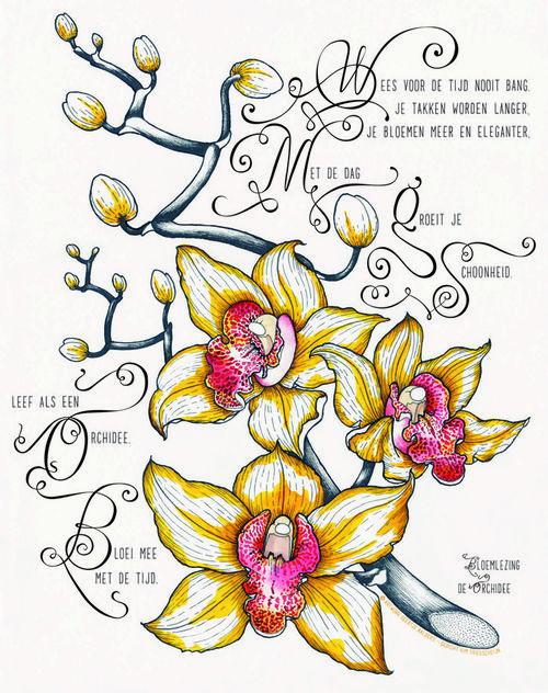 Bloemlezing3_Orchidee_Lang.jpg