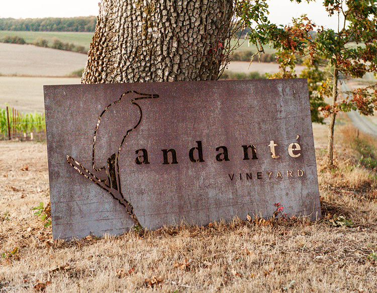 andanté-vineyard-about-area-sign.jpg
