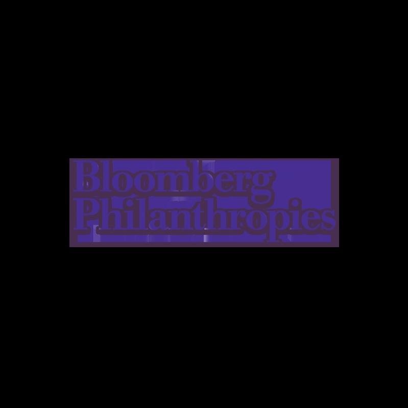 2X4_BLOO-Purple-1024x319.png
