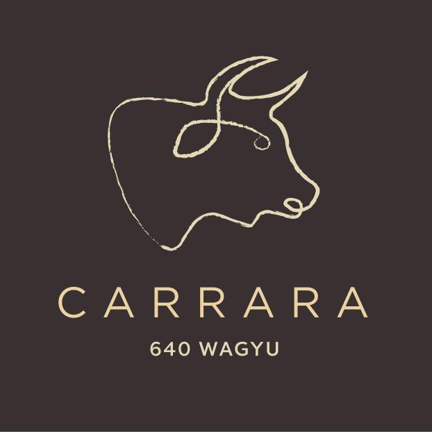 CARRARA_DESC_FCOL_RGB.png