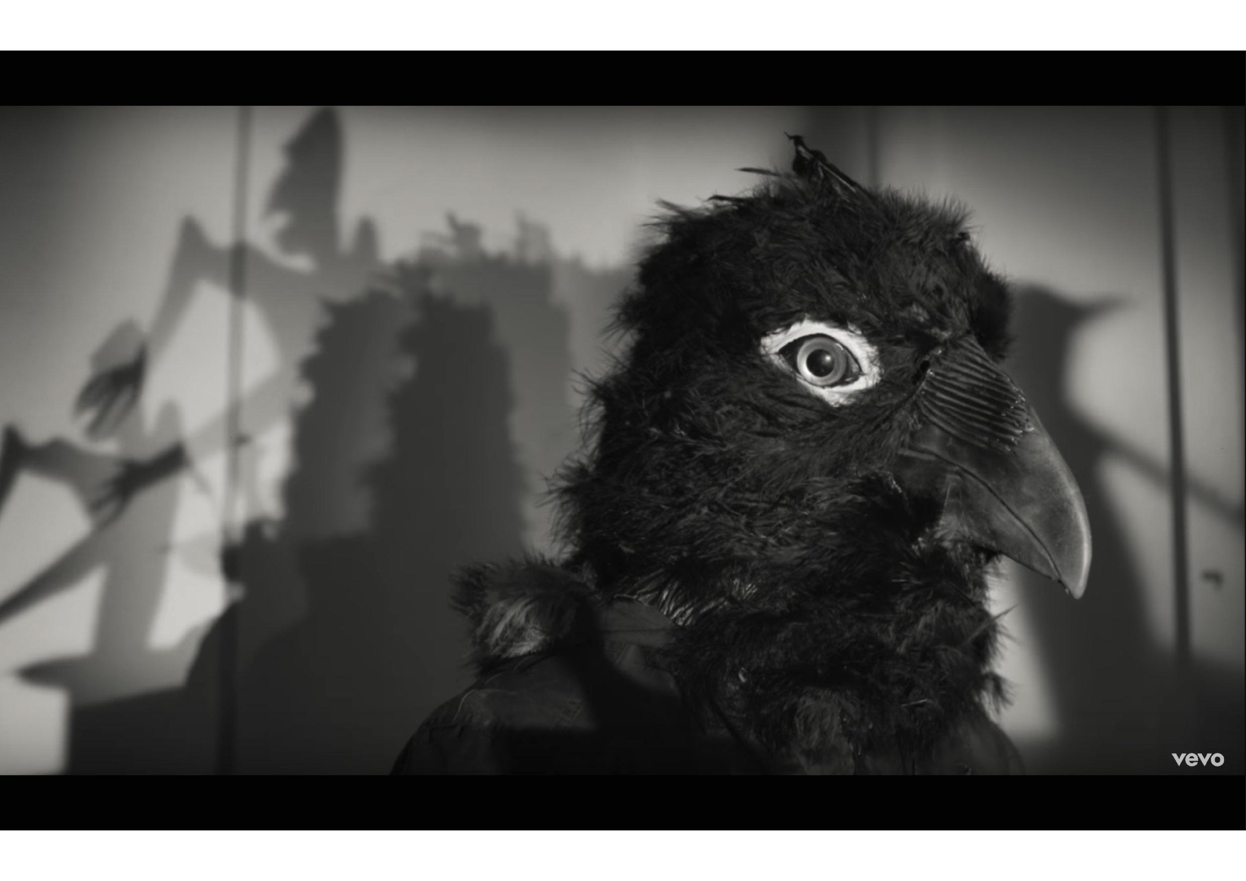 bird head-01.jpg