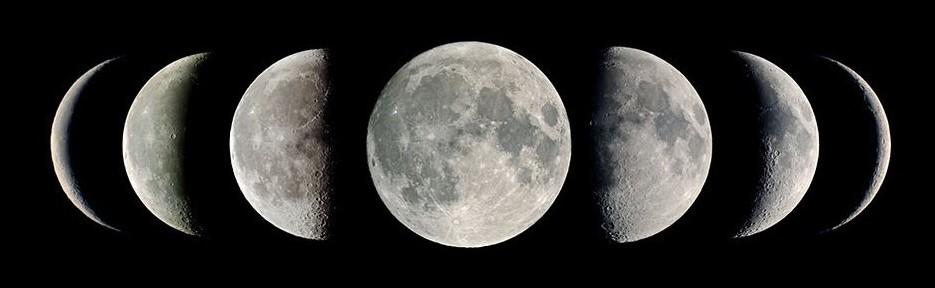 Moon_Phase_Born_Calculator (2).jpg