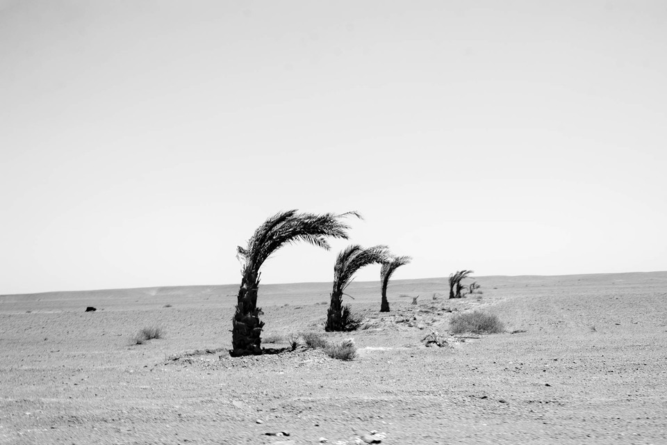 Along the journey the refugees will pass many desert graves. July 2017.
