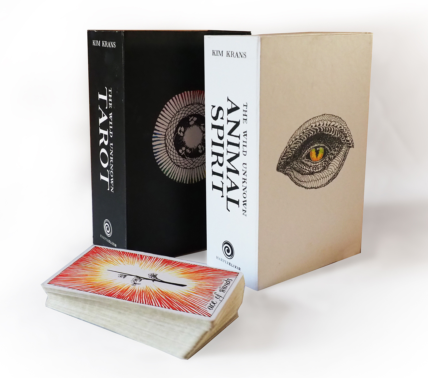 Box of Wild Unknown Tarot Card deck. Tarot course. Learn how to read tarot cards with Debbie from Spirit In You