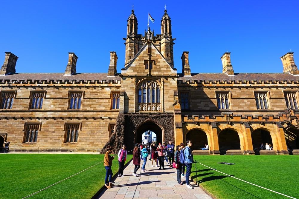University picture.jpg
