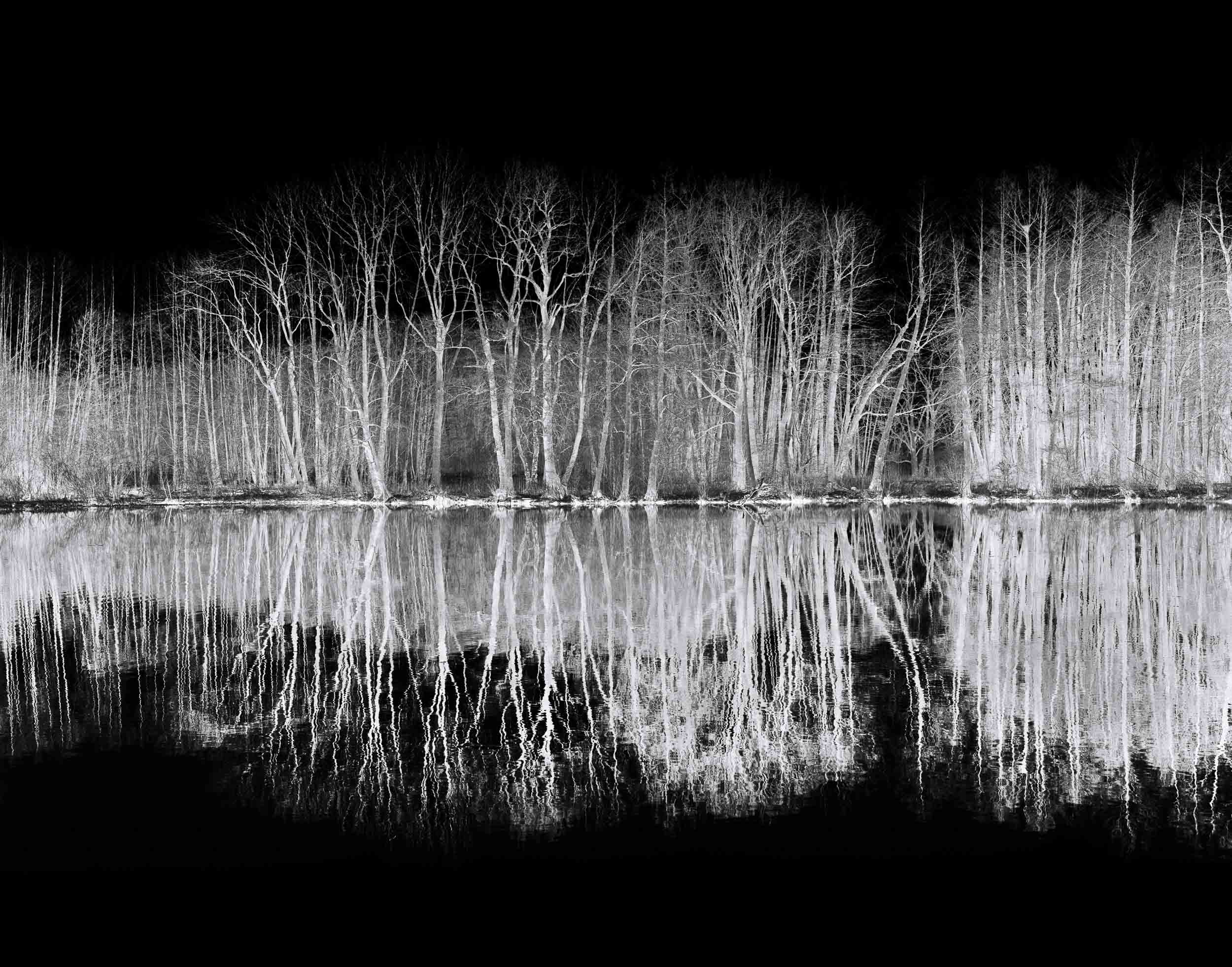 Black_Forest_Glusgold_10.jpg