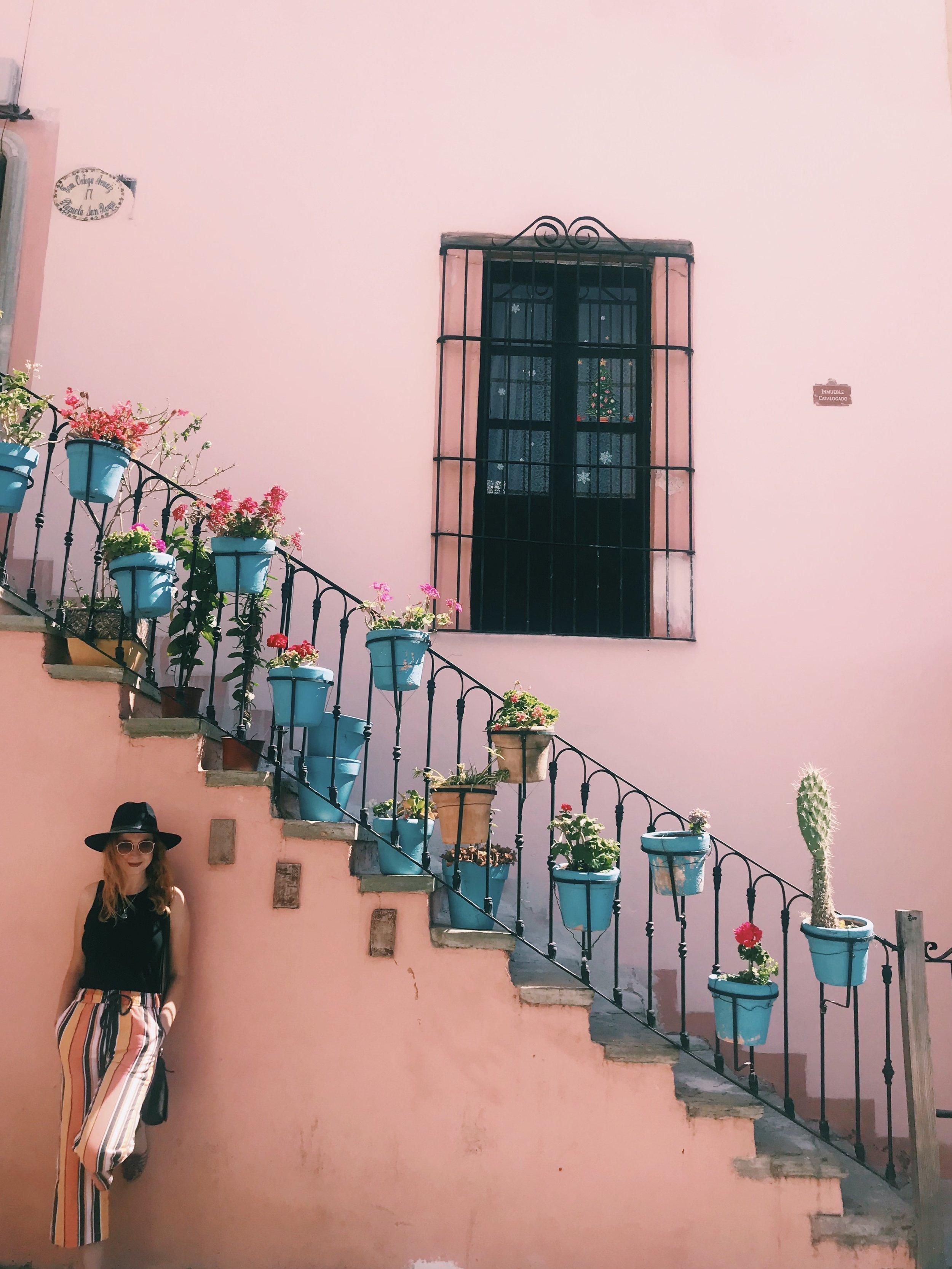 flowers Guanajuato.jpg