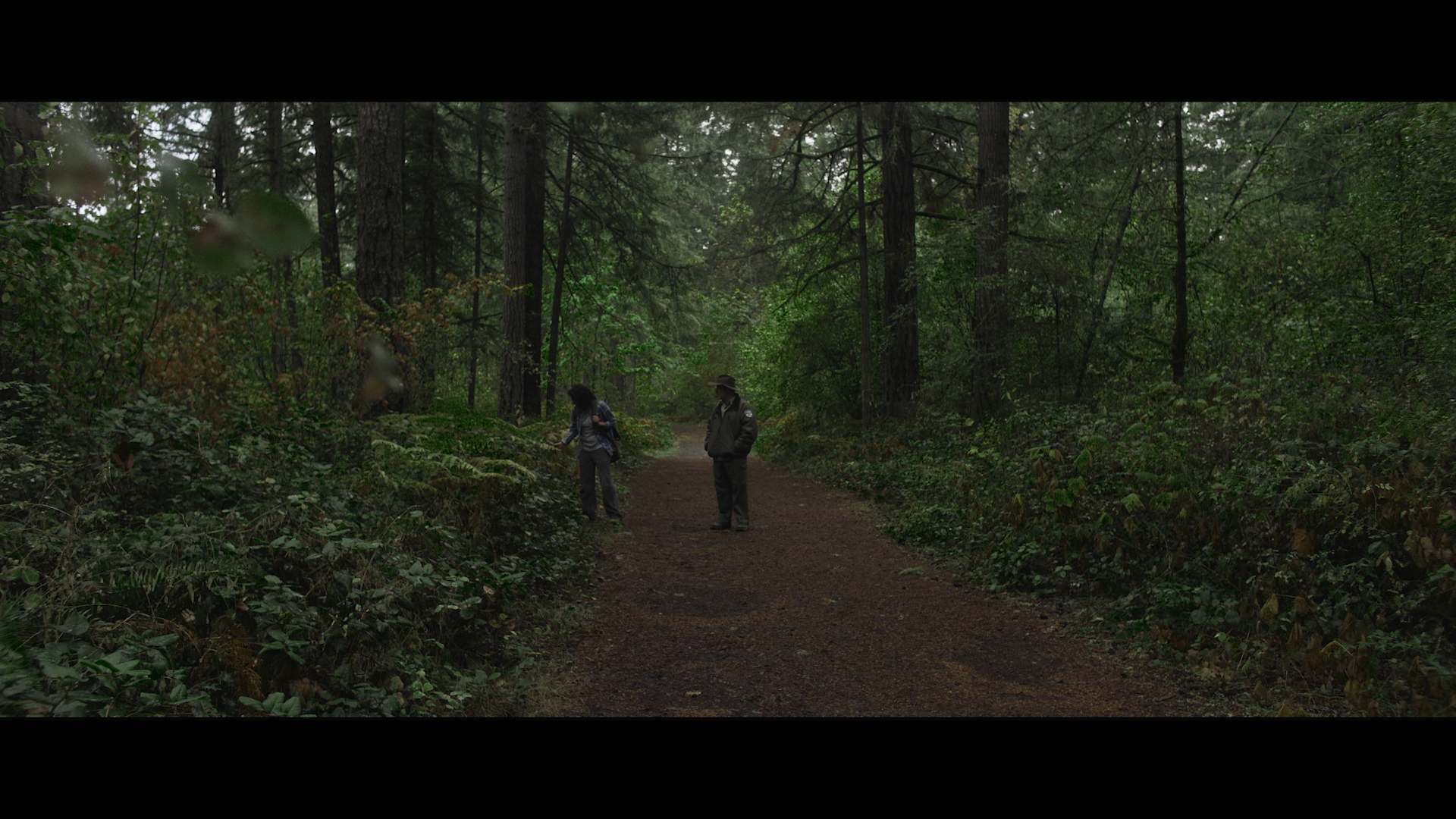 Wide Shot in Woods.png