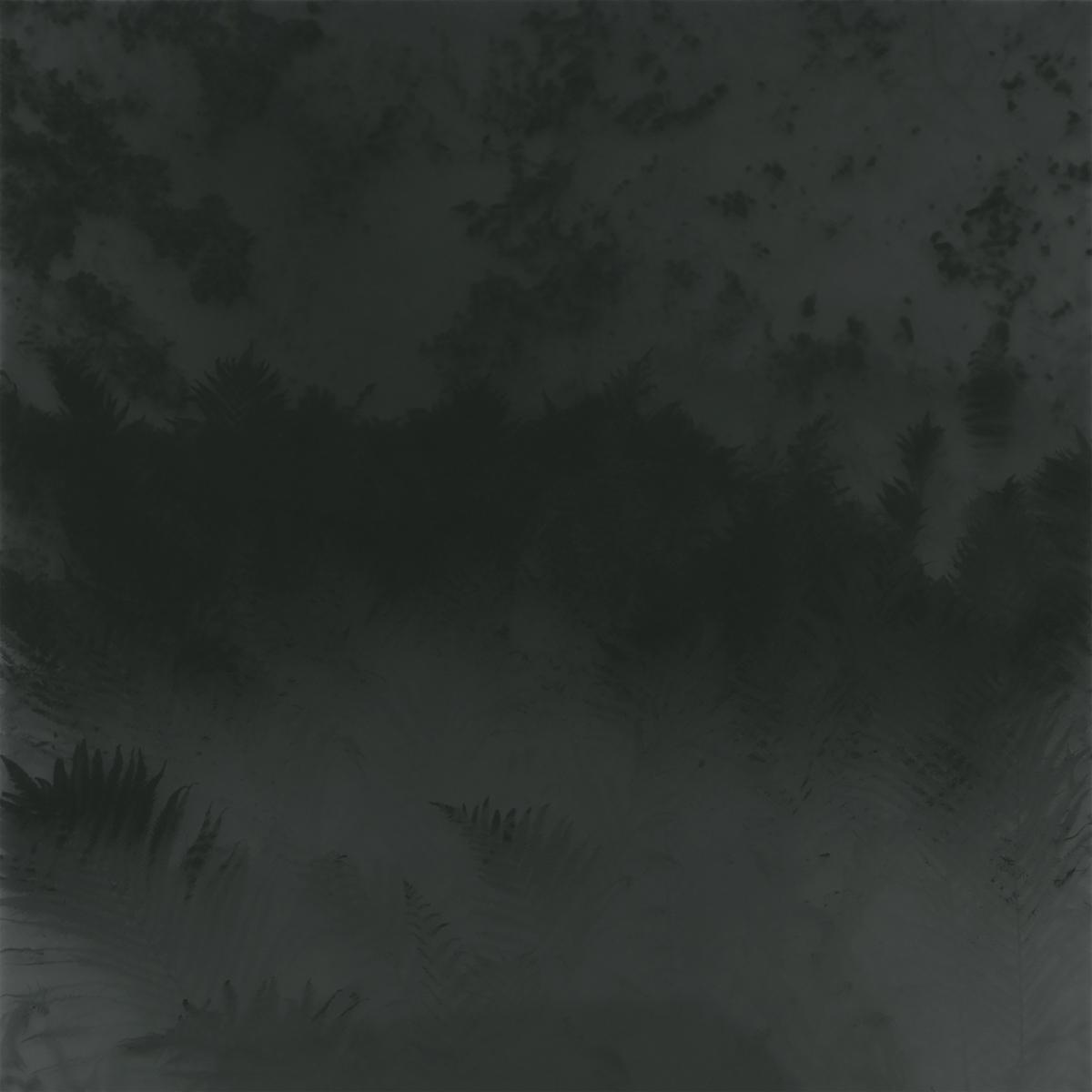 Veil III, 2016