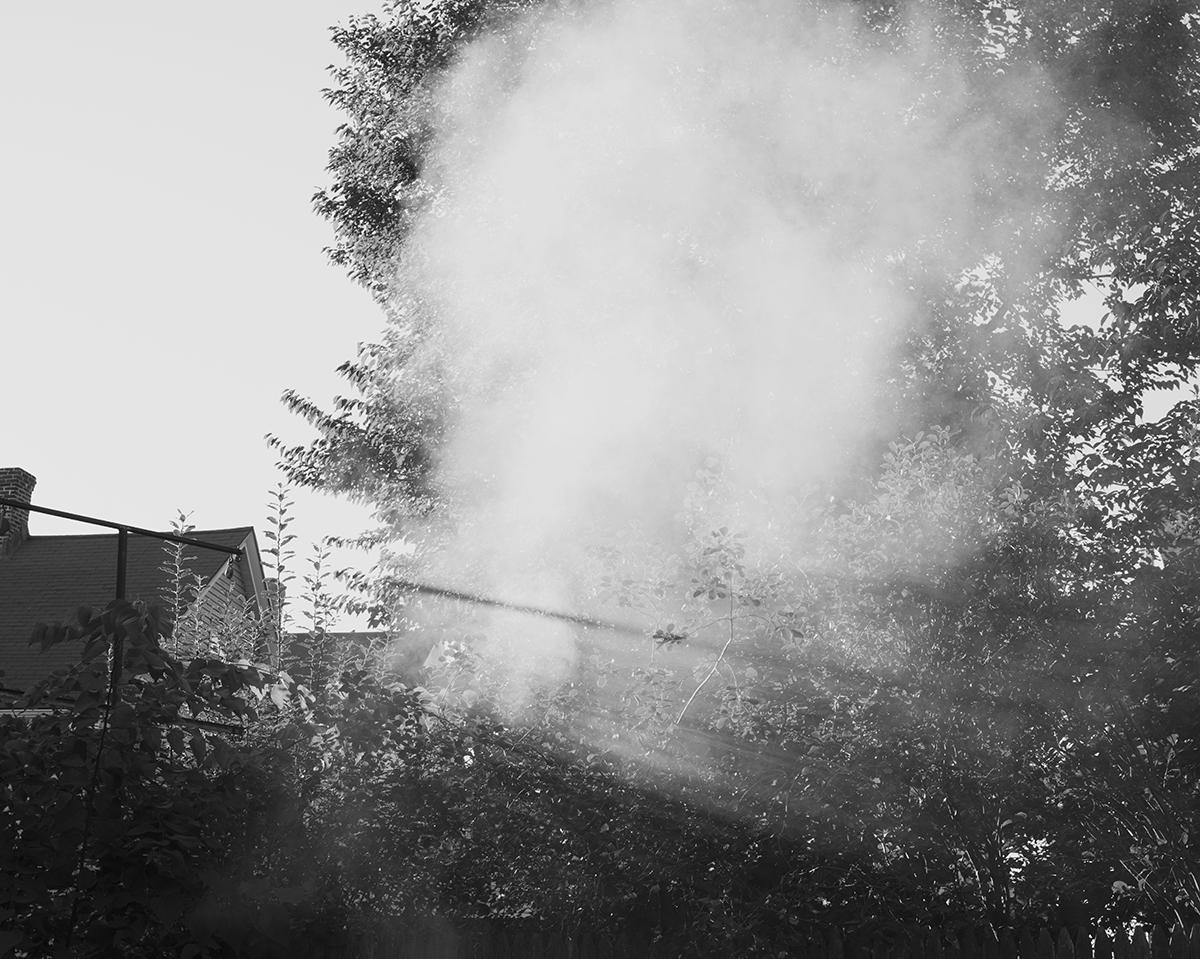 Untitled (Smoke), Massachusetts, 2014